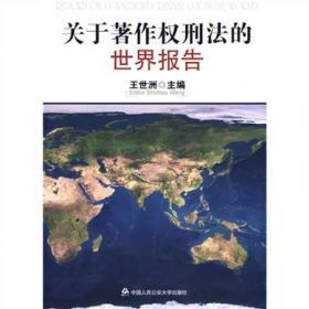 我的一点家当:王世洲刑事法译文集:translations in criminal law