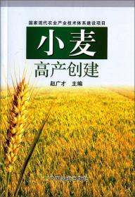 小麦优质高效栽培答疑(新农村)