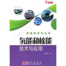 氢能:21世纪的绿色能源