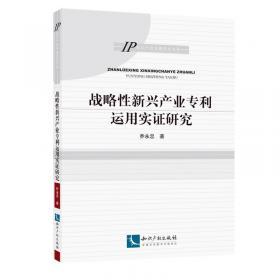 IP知识产权专题研究书系:电子商务中的商标使用及侵权责任研究