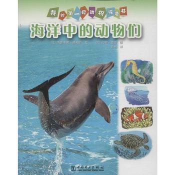 海洋中的动物们
