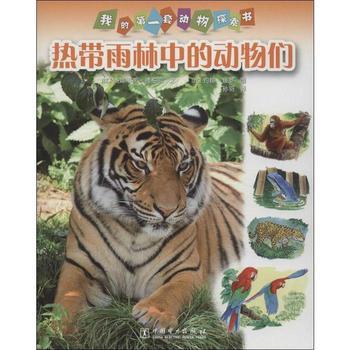 热带雨林中的动物们