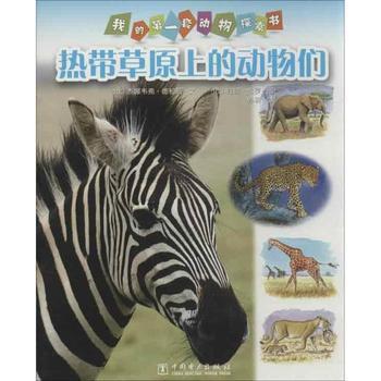 热带草原上的动物们