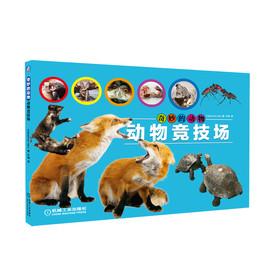 奇妙的动物——动物竞技场
