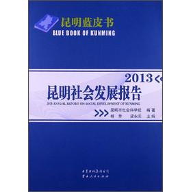 昆明社会发展报告.2013