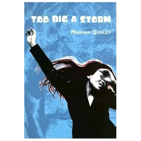 Too Big a Storm