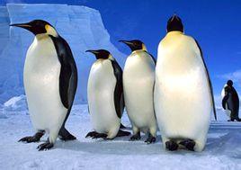 Penguin Audiobooks