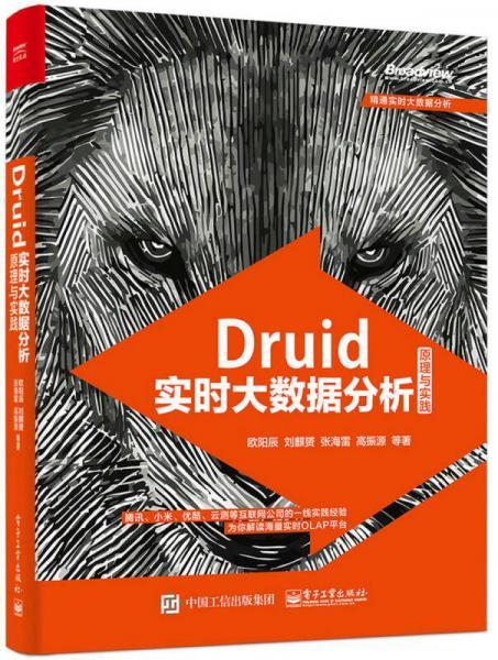 Druid瀹��跺ぇ�版����������涓�瀹�璺�
