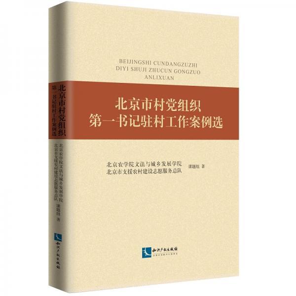 北京市村党组织第一书记驻村工作案例选