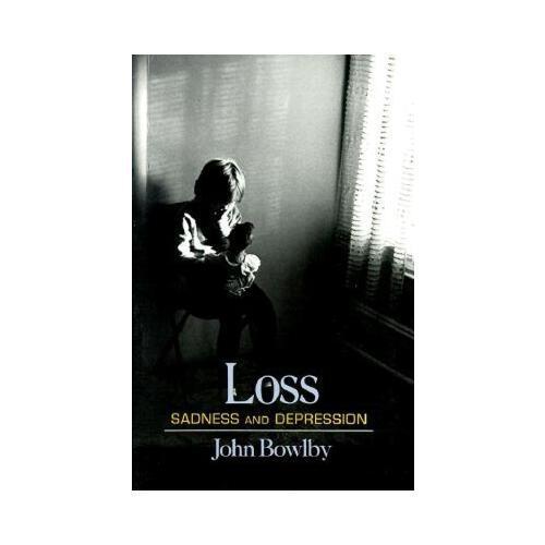 Loss  Sadness And Depression