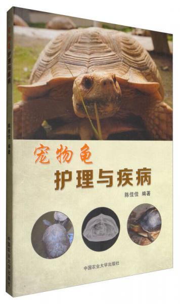 宠物龟护理与疾病
