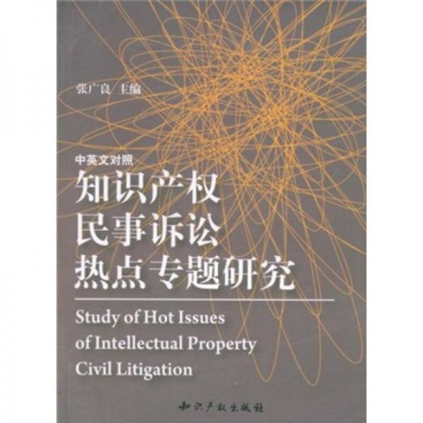 知识产权民事诉讼热点专题研究(中英文对照)