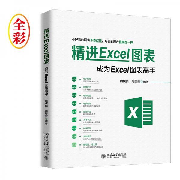 精进Excel图表成为Excel图表高手