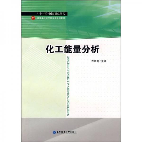 高等学校化工类专业规划教材:化工能量分析