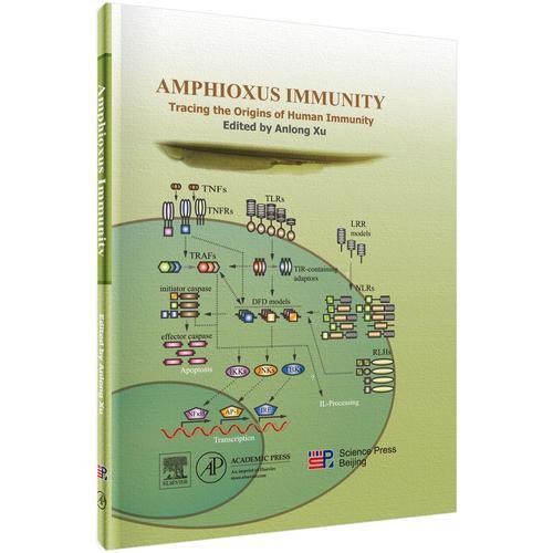 文昌鱼免疫学-追溯人类免疫的起源(英文版)