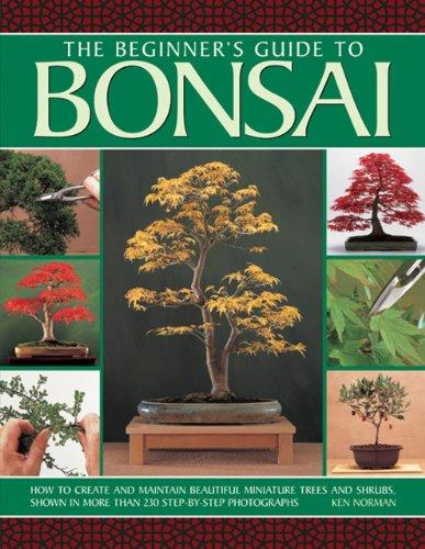 Beginners guide to Bonsai