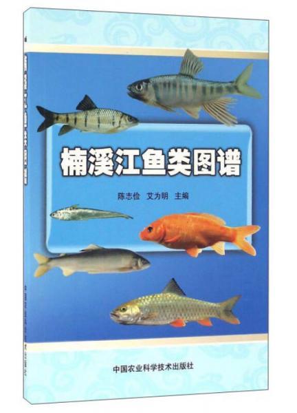 楠溪江鱼类图谱
