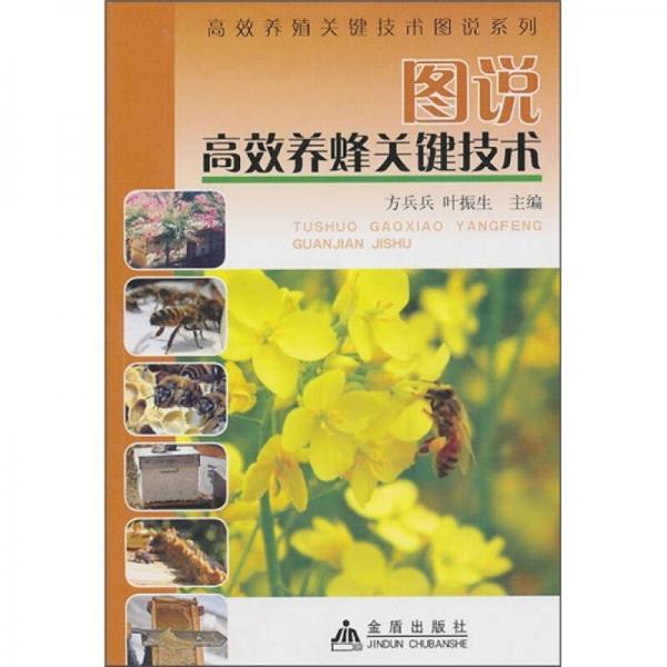 图说高效养蜂关键技术