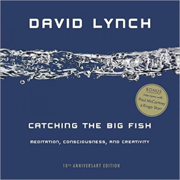 Catching the Big Fish  Meditation, Consciousness
