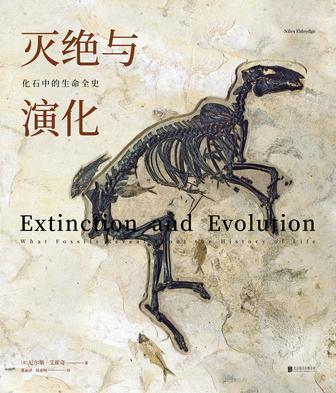 灭绝与演化:化石中的生命全史
