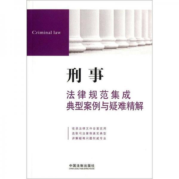 刑事法律规范集成典型案例与疑难精解