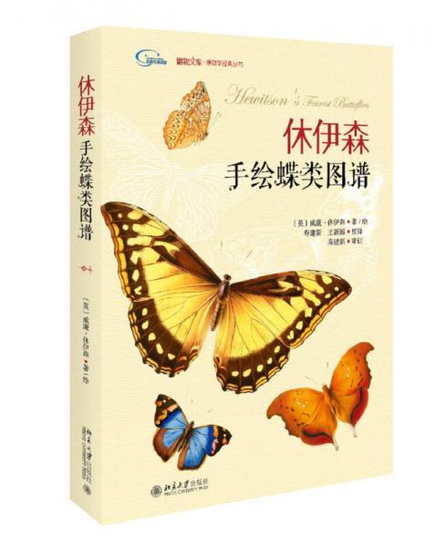 休伊森手绘蝶类图谱