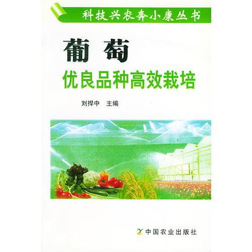 葡萄优良品种高效栽培——科技兴农奔小康丛书
