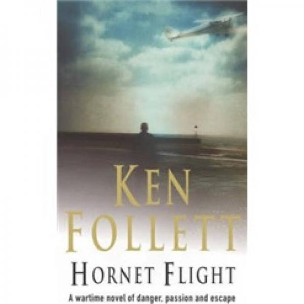 Hornet Flight  大黄蜂的飞行