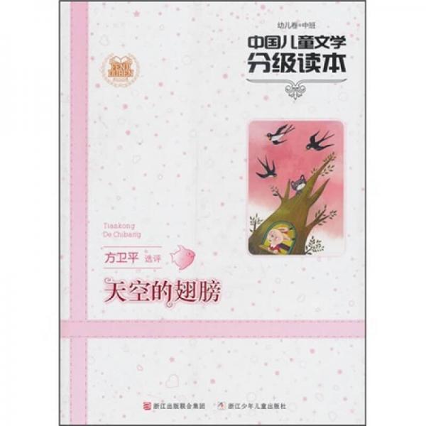 中国儿童文学分级读本:天空的翅膀(幼儿卷中班)