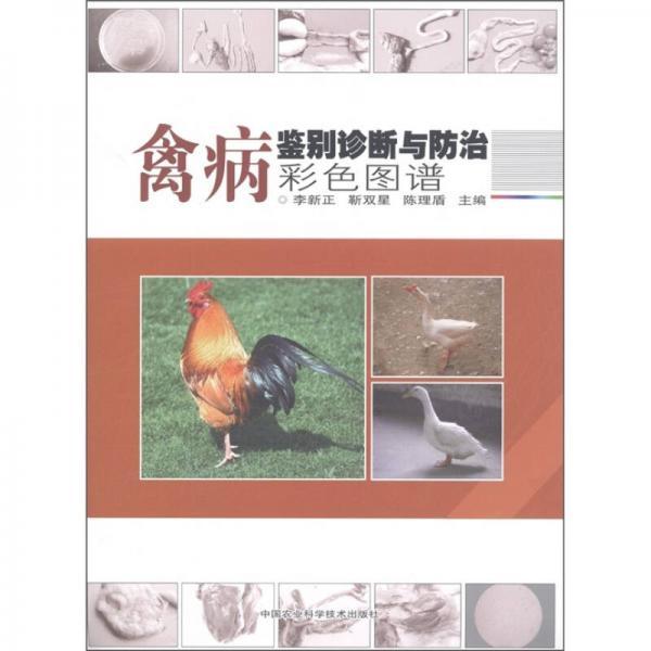 禽病鉴别诊断与诊治彩色图谱