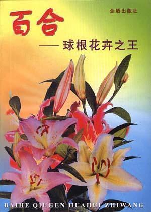 百合-球根花卉之王