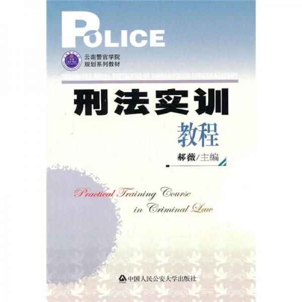 云南警官学院规划系列教材:刑法实训教程