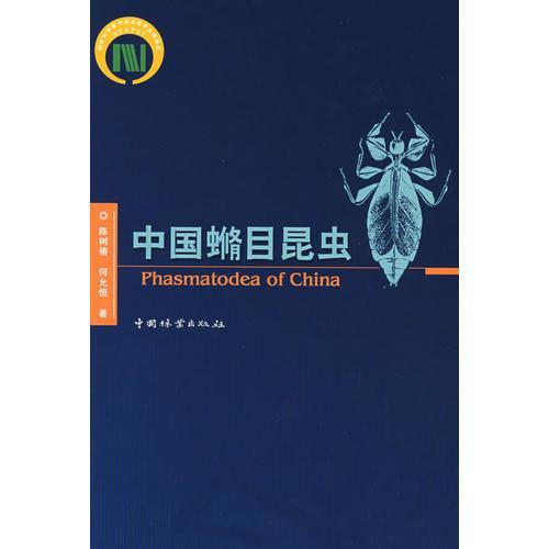 中国脩目昆虫