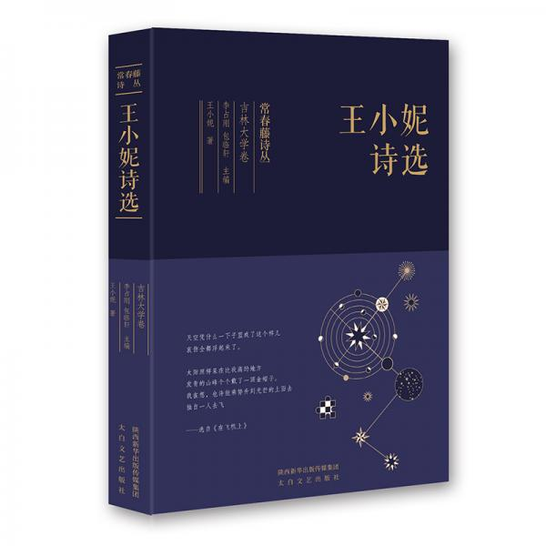 常春藤诗丛:王小妮诗选