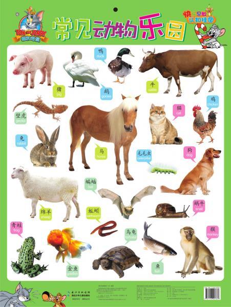 猫和老鼠快乐早教认知挂图:常见动物乐园/海洋动物世界