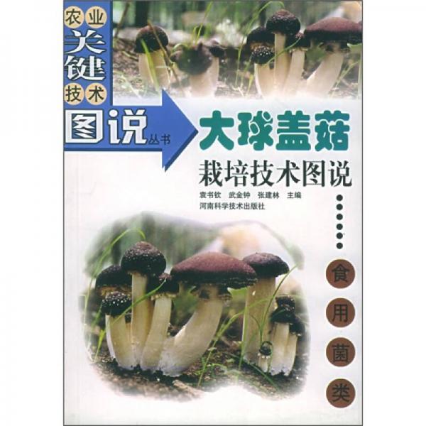 大球盖菇栽培技术图说:食用菌类