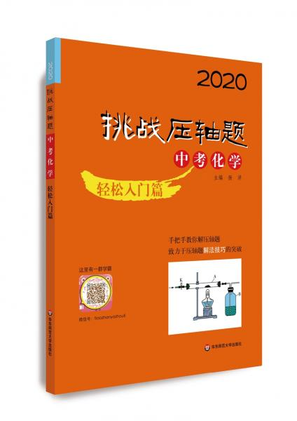 2020挑战压轴题·中考化学—轻松入门篇