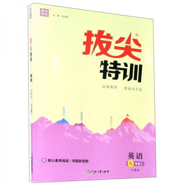 英语九年级上(人教版)/拔尖特训