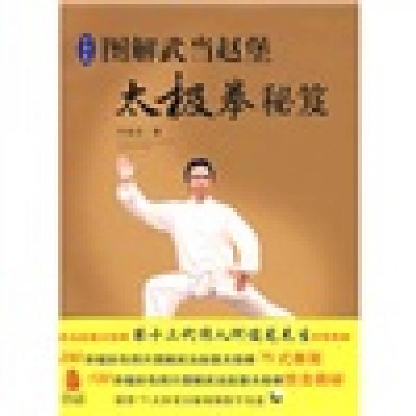 图解武当赵堡太极拳秘笈(彩图版)
