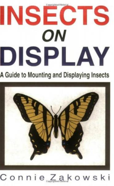 Insects on Display: A Guide to Mounting & Displaying Insects