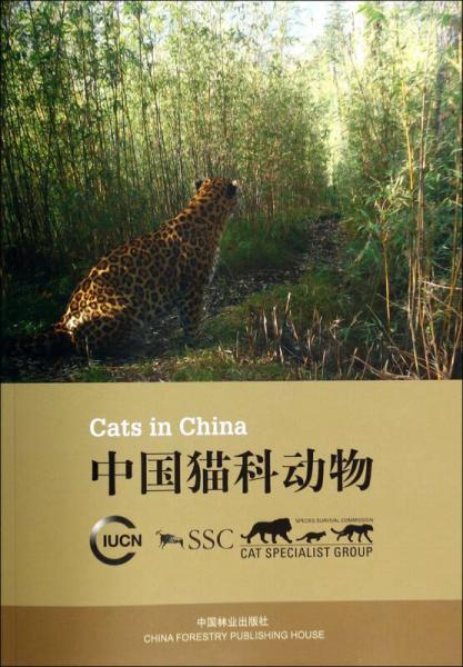 中国猫科动物