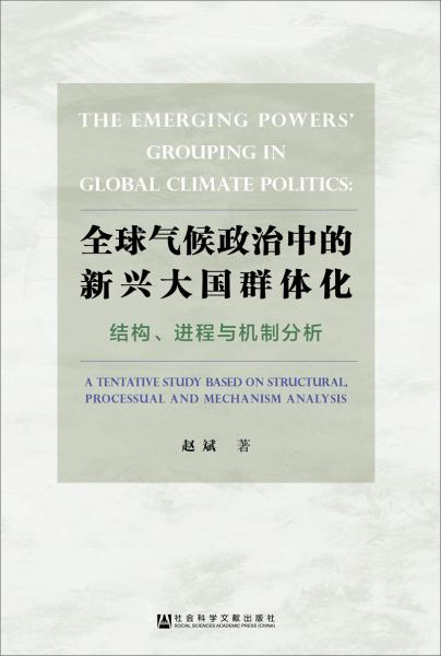 全球气候政治中的新兴大国群体化——结构、进程与机制分析