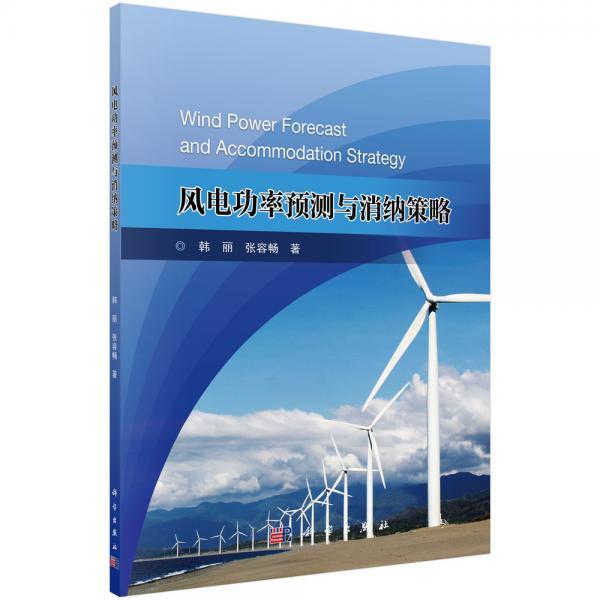 风电功率预测与消纳策略