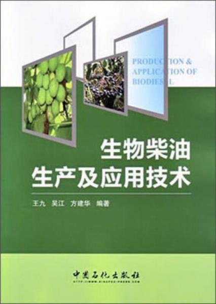 生物柴油生产及应用技术