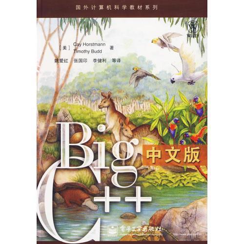 Big C++中文版