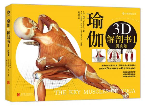 瑜伽3D解剖书I:肌肉篇