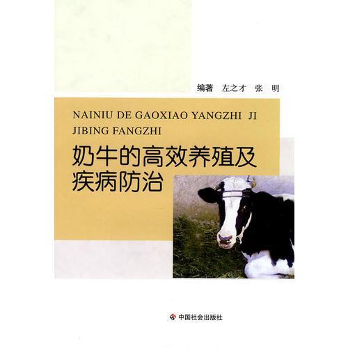 奶牛的高效养殖及疾病防治