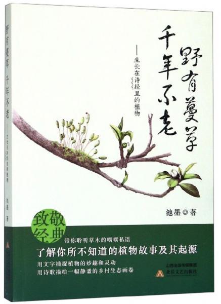 野有蔓草千年不老:生长在诗经里的植物
