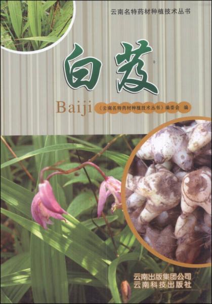 云南名特药材种植技术丛书:白芨
