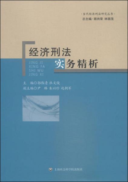 当代经济刑法研究丛书:经济刑法实务精析